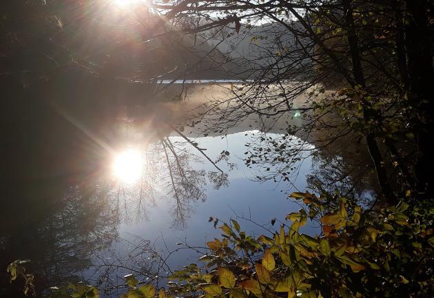 Lac de Longemer 3